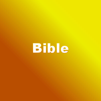 bible questions
